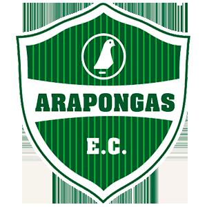 Arapongas Esporte Clube