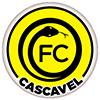 Futebol Clube Cascavel